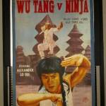 wu tang v ninja